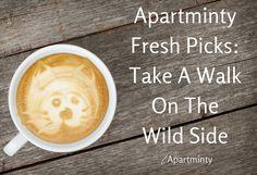 Apartminty Fresh Picks: Take A Walk On The Wild Side