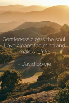 Gentleness clears the soul,  Love cleans the mind and makes it free  - David Bowie