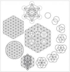 Tattoo Flower Of Life Sacred Geometry Fruit 60 Ideas Sacred Geometry Symbols, Sacred Geometry Tattoo, Geometric Designs, Geometric Shapes, Zentangle, Platonic Solid, Seed Of Life, Geometry Pattern, Crystal Grid