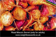 Only for Adults: Maca's secret