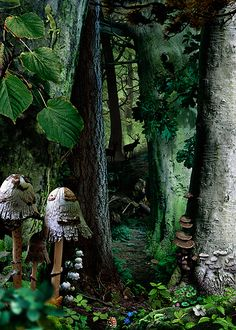 Study-in-Green #16, Ruud van Empel