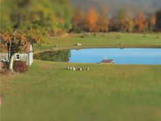Tilt-shift time-lapse shows construction of a man-made pond in 2 minutes