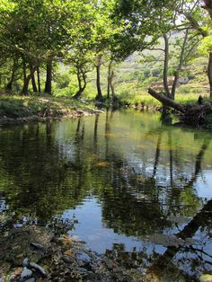 #Ahla #river, one of the three rivers of #Andros with constant flow, #gushes from the hill sides of #Vourkoti village and empties into the #Aegean #Sea.