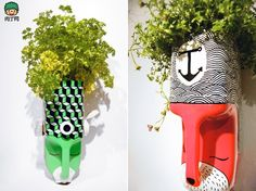 Planters made from plastic bottles