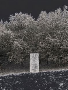ÁLVARO NEGRO - Estela (Monteagudo), 2011. Impressão jacto de tinta de pigmento sobre papel fine art. 40 x 30 cm. Edição de 30 + 3 PA. A edição é acompanhada de Certificado de Autenticidade.