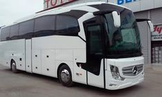 Star Bus, Bus Art, Luxury Bus, New Bus, Cold Brew Coffee Maker, Mode Of Transport, Coffee Lover Gifts, Busses, How To Make Tea