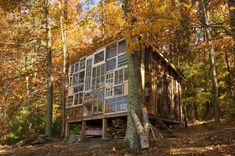 Tiny house in West Virginia uses dozens of reclaimed windows to create window wall. Reclaimed Windows, Recycled Windows, Old Windows, Reclaimed Lumber, Barn Windows, House Windows, Recycled Wood, Recycled Materials, Cabins In West Virginia