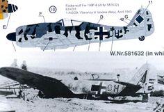 Authentic Decals FW-190F-8