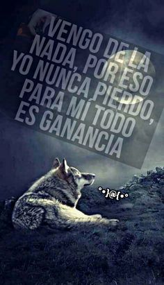 Una simple célula del cieno primordial 🤫🤭😘 Spanish Quotes, Life Advice, Wolves, Places To Visit, Learning, One Man Wolf Pack, Amor, Motivational Quotes, Thoughts