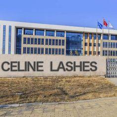 Celine Mink Lashes Factory 3d Mink Lashes, Celine, Mink Fur