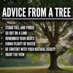 Love Nature... you were born in it. Respect the trees, learn from them... peace&love