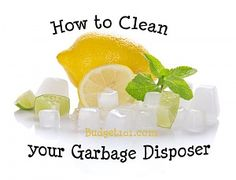 Garbage Disposal Freshener