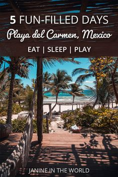 This epic Playa del Carmen itinerary includes everything you need to know for 5 action-packed days in the Riviera Maya. You'll discover all the best things to do, see and eat in Playa del Carmen! #mexicotravel #playadelcarmen