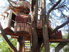 Conheça dez casas na árvore para inspirar você - Revista Ecológico