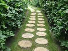 Wood is a fantastic material for eco friendly, natural and beautiful garden path design. Large back yard and garden designs will benefit from natural looking wooden walkways and paths toward perennial
