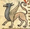 Medieval Bestiary : Griffin Gallery