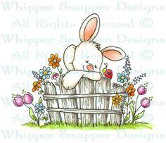 Bunny Fence