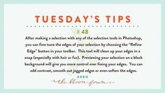Tuesday's Tips from Bloom http://www.everythingbloom.com/tuesdays-tips-48