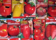 Семена томатов: самые урожайные сорта Diy Greenhouse, Trees To Plant, Vegetables, Design Ideas, Bedroom, Vegetable Garden, Sodas, Tomatoes, Lawn And Garden