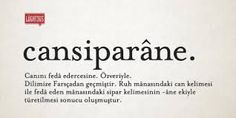 Cansiparane Meaningful Words, Motto, Cool Words, Karma, Meant To Be, Literature, Names, Entertaining, Islam