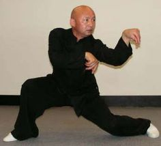 """Northern Praying Mantis (螳螂; literally """"praying mantis fist"""") is a style of Chinese martial arts, sometimes called Shandong Praying Mantis after its province of origin."""