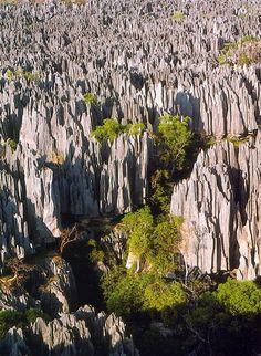 The Tsingy de Bemaraha stone forest in Madagascar
