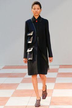Céline Herfst/Winter 2015-16 (28)  - Shows - Fashion