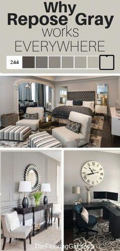 home decor painting Repose Gray from Sherwin Williams - Fabulously Neutral. The perfect greige, so it works in almost all rooms of your home. Grey Paint Colors, Bedroom Paint Colors, Paint Colors For Home, House Colors, Neutral Paint, Colors For Bedrooms, Neutral Wall Colors, Gray Color, Gray Paint For Bedroom