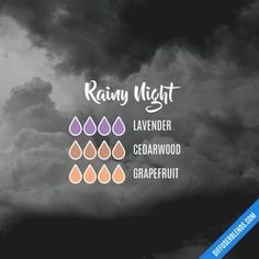 Rainy Night - Essential Oil Diffuser Blend