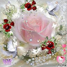 I Love You Images, Beautiful Flowers Pictures, Beautiful Gif, Flower Pictures, Beautiful Roses, Pretty Pictures, Good Morning Gift, Good Morning My Love, Emoji Images