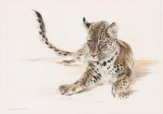 Ralph Thompson, Mischief Afoot, #Leopard #Cub #wildlifeart