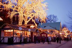 The Famous Liseberg Christmas market Been there, done that! Amazing!