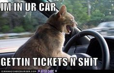 I'm in your car... haha!!