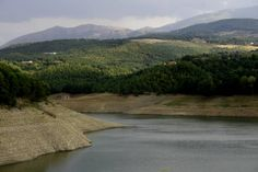 M5S Basilicata. Esigiamo chiarezza sulle cause della marea nera nel Pertusillo