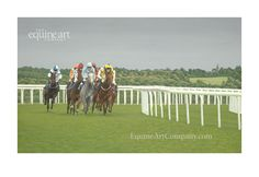 In this limited edition fine art print we are able to witness the exhilaration and drama of the early stages of a race, as the settling field approaches the viewer in a wall of motion, like a tidal wave of galloping muscle and excitement. Horse Art, Horse Racing, Equestrian, Wave, Fine Art Prints, Art Gallery, Drama, Horses, Summer Evening