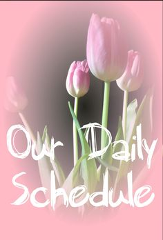 Helpful daily schedule to provide structure for stay-at-home moms/homeschoolers