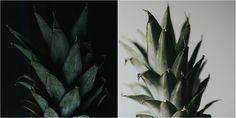 Still life | Pineapp
