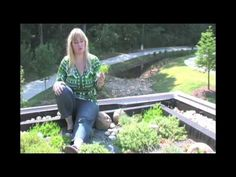 Sky Gardens - Greenroofs of the World: 4of4 - Rock Mill Park