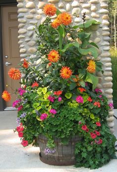 Summer planter with dahlias, geraniums etc. like all the different textures & colours
