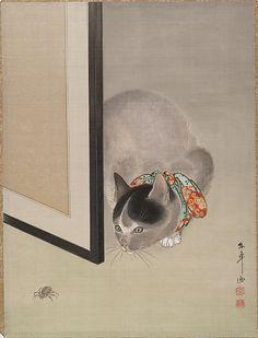 Ôide Tôkô, Cat Watching a Spider, ca. 19th century, Meiji Period, Album leaf; ink and color on silk, Metropolitan Museum of Art, New York