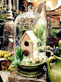 Spring Cloche.............Cute idea to put the birdhouse inside with greenery.