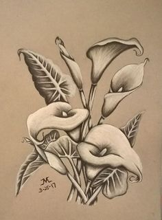 Draw Charcoal Charcoal drawing of Calla Lilies Pencil Drawings Of Flowers, Pencil Art Drawings, Love Drawings, Tattoo Drawings, Drawing Sketches, Contour Drawings, Drawing Ideas, Lilies Drawing, Flower Art Drawing