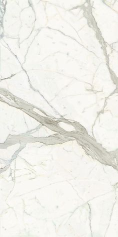 Artedomus tiles calacatta tile.  Good colour but this a large scale tile, nothing small.