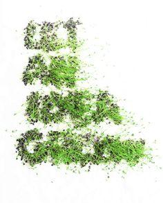 let an idea grow - nota bene. lentils & cotton typeface. 8 days growing