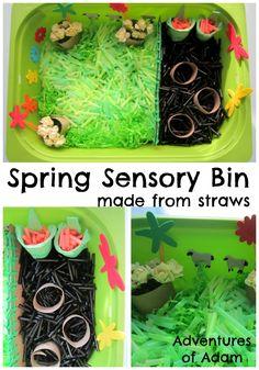 Straw Spring Sensory Bin   http://adventuresandplay.com/straw-spring-sensory-bin/