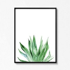 Aquarell Pflanzen, Agave, Agave Drucken, Tropischen Print, Aquarell-Illustration, botanische Illustration, Pflanzen Drucken, Tropischen