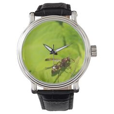 Shop Zazzle's selection of customizable Green watches & choose your favorite design from our thousands of spectacular options.