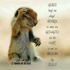Gebed hoe nie altyd woorde te wees nie, gedagtes uit die hart is net so welkom by Jesus. Inspirational Qoutes, Motivational, Jesus Our Savior, Evening Greetings, Inspiration For The Day, Afrikaanse Quotes, Abundant Life, Bible Verses Quotes, True Words