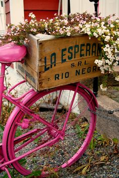Pink bike and flowers. What a beautiful combo.