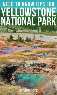 Podcast Episode – Need-to-know Yellowstone National Park tips National Park Lodges, National Park Camping, Yellowstone National Park, Us National Parks, Grand Teton National Park, Yellowstone Vacation, West Yellowstone, Hiking Spots, Tennessee Vacation
